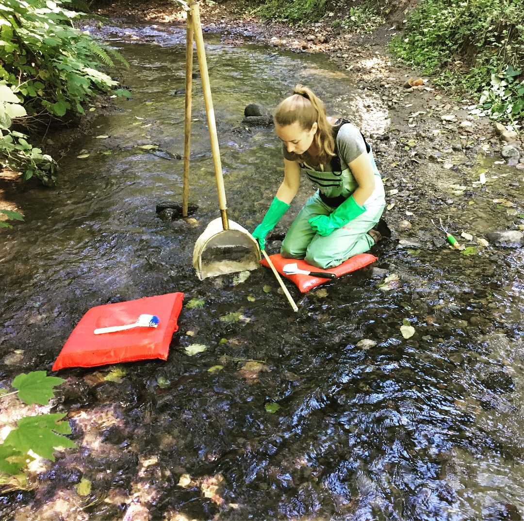 Stream monitoring