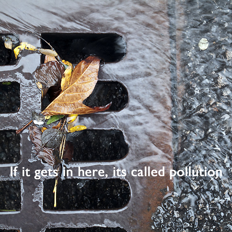 Keep pollution out of storm drains
