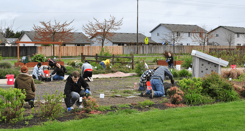Volunteers working at Pacific Community Park.