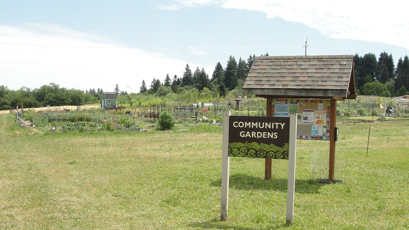 The Community Gardens at the 78th Street Heritage Farm.l