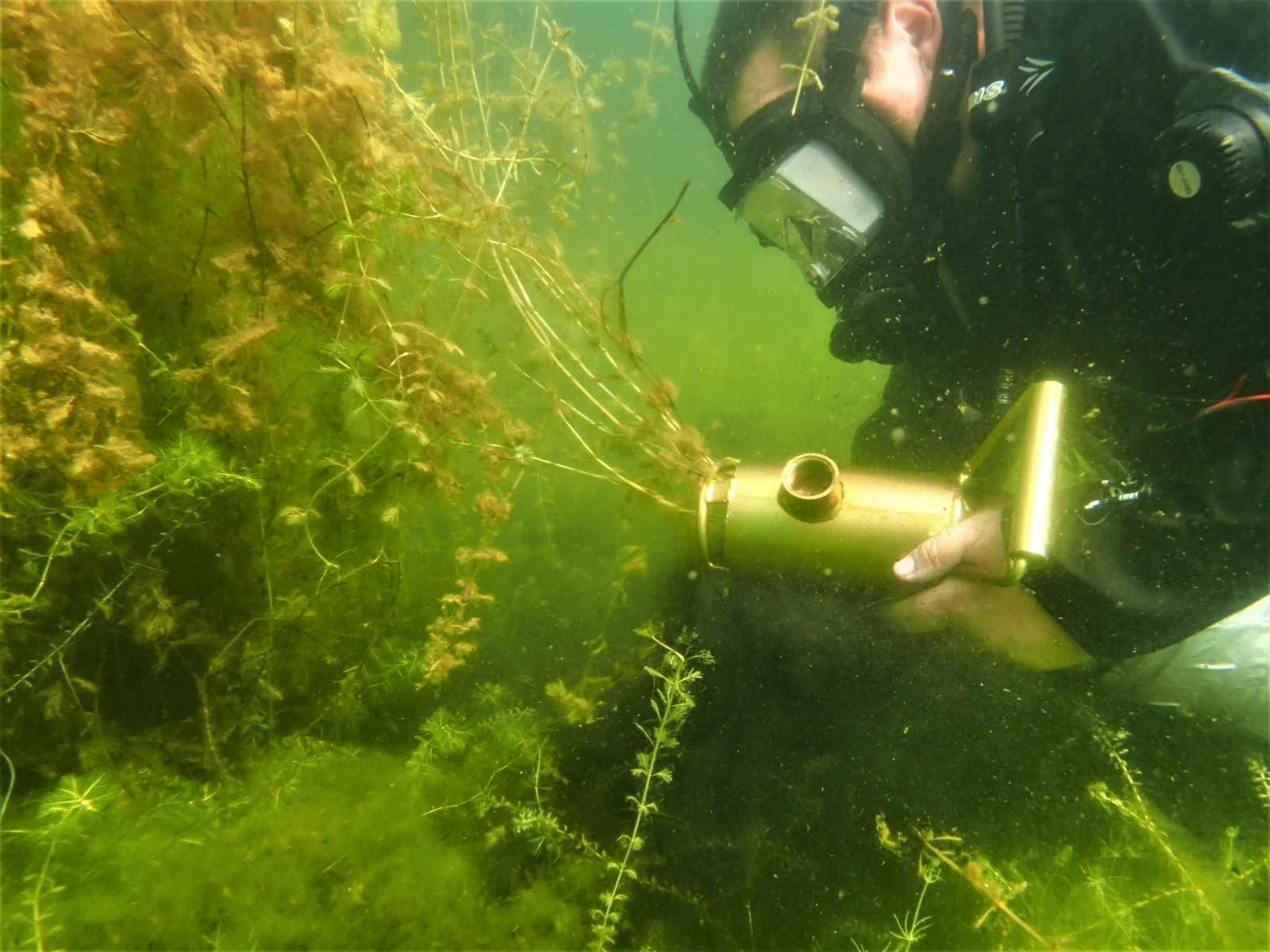 DASH milfoil harvesting, photo credit Wisconsin Land and Water Conservation