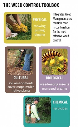 Weed control toolbox graphic.