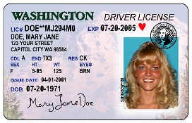 Picture of a Driver License