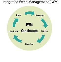 Integrated weed management graphic