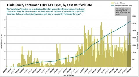 COVID-19 cases by verification date
